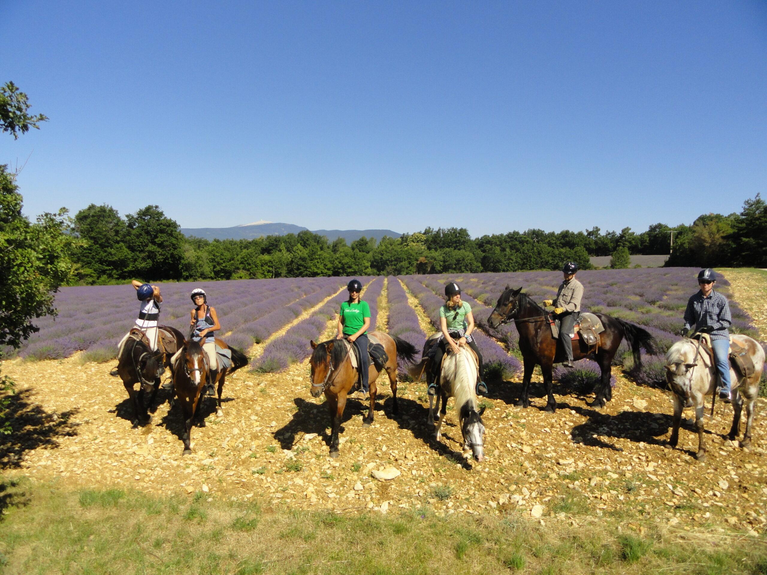 Frankrijk te paard - Vakantie te paard / Reisbureau Perlan