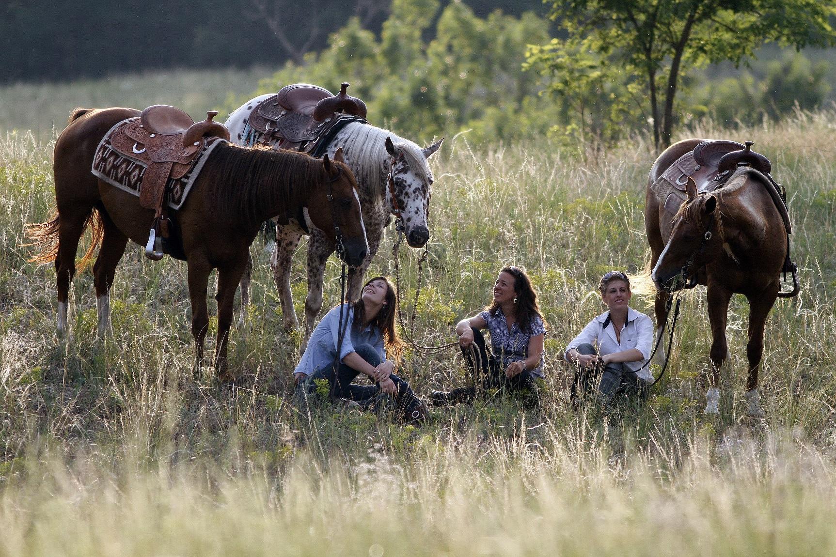 Westernrijden in Hongarije - Vakantie te paard / Reisbureau Perlan