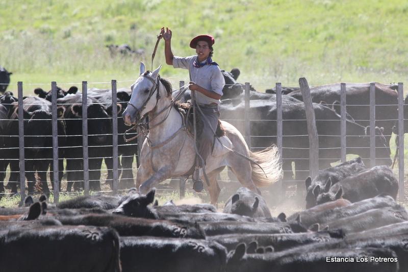 Paardrijden in Argentinië - Vakantie te paard / Reisbureau Perlan