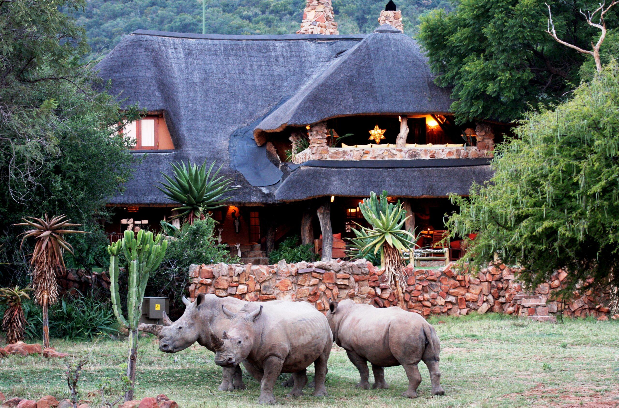 Safari te paard in Ants Lodges / Zuid Afrika - Vakantie te paard / Reisbureau Perla