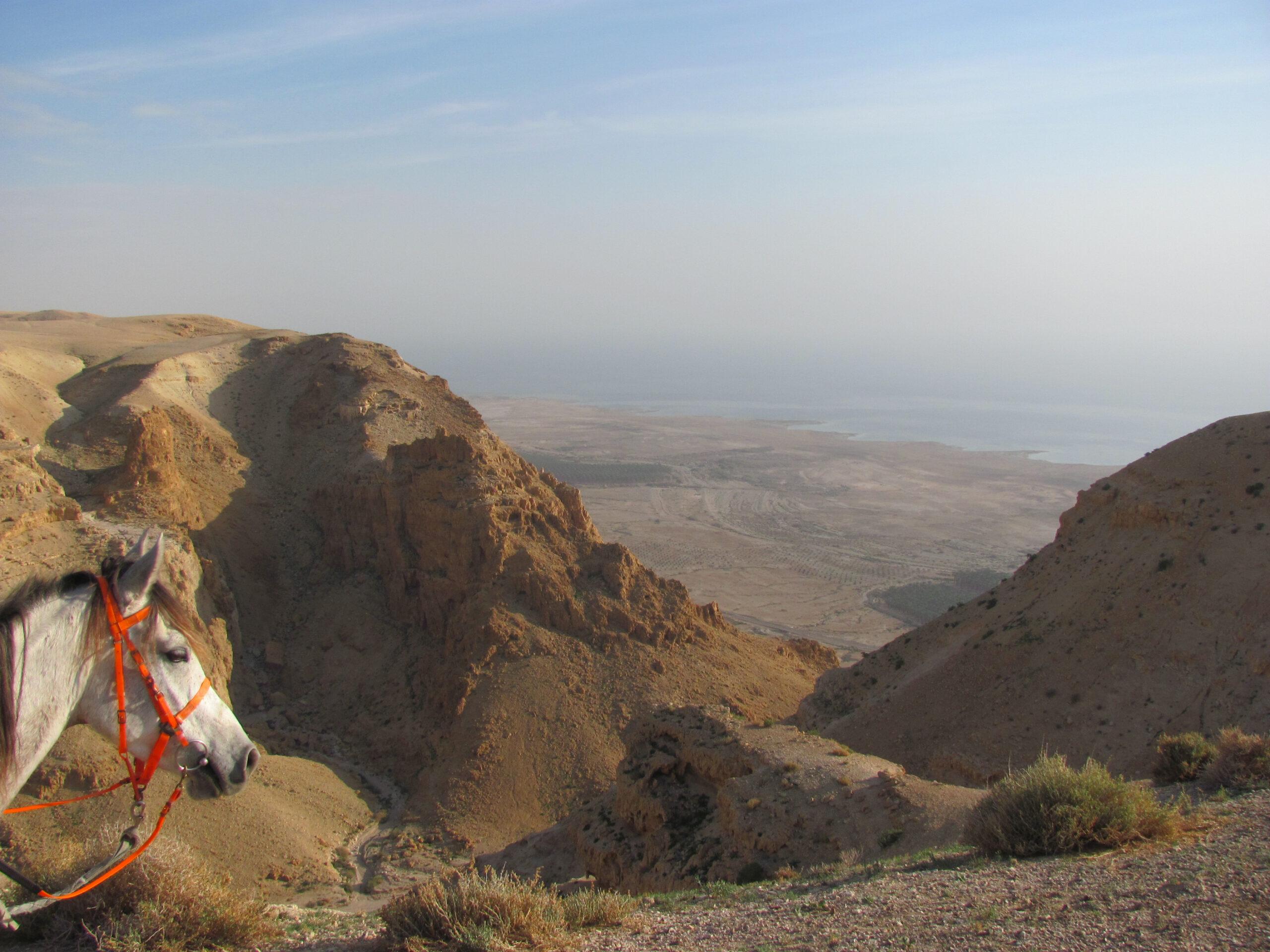 Woestijn en zee in Israël - Vakantie te paard / Reisbureau Perlan