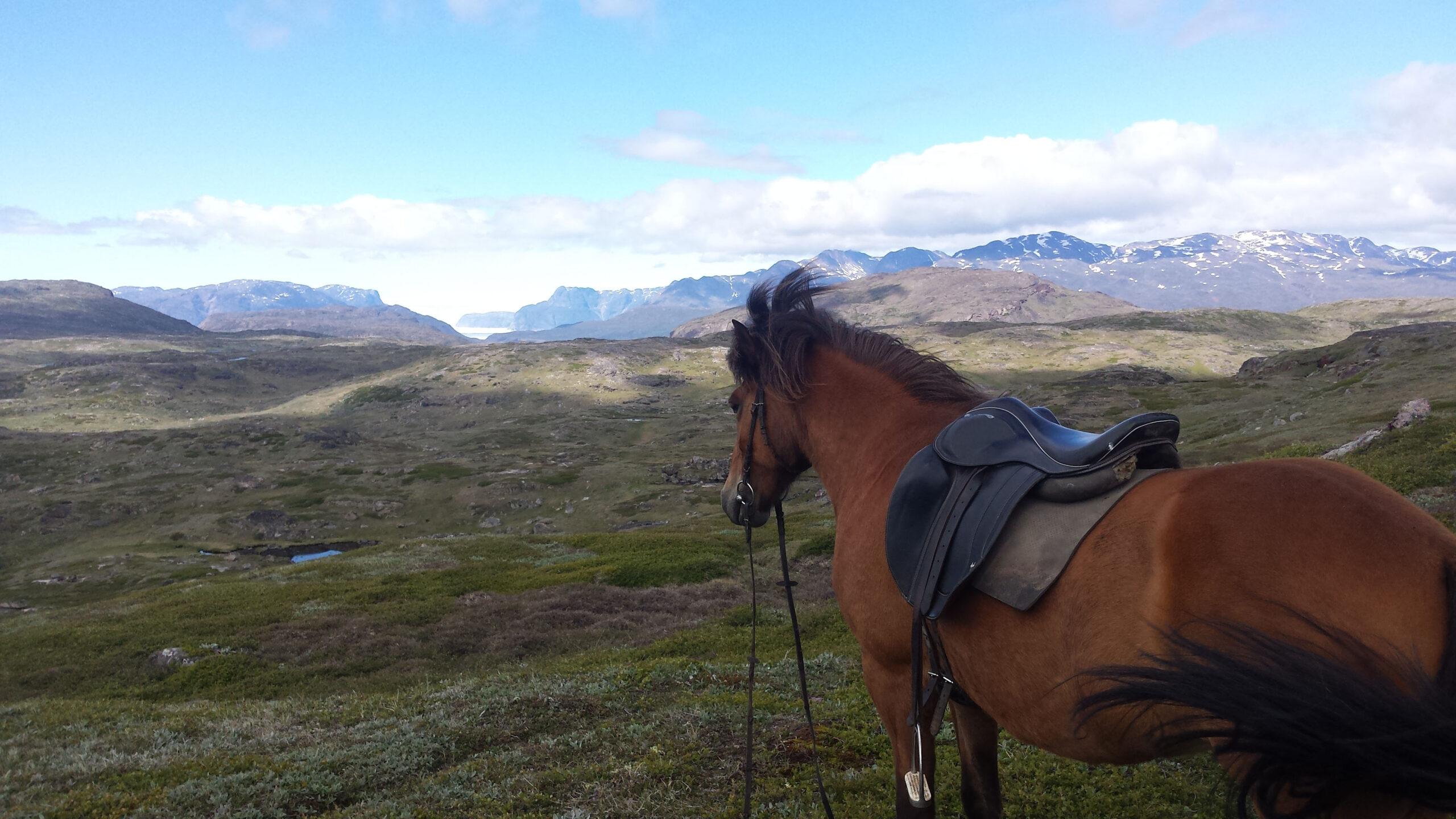 Puur natuur in Groenland - Vakantie te paard / Reisbureau Perlan