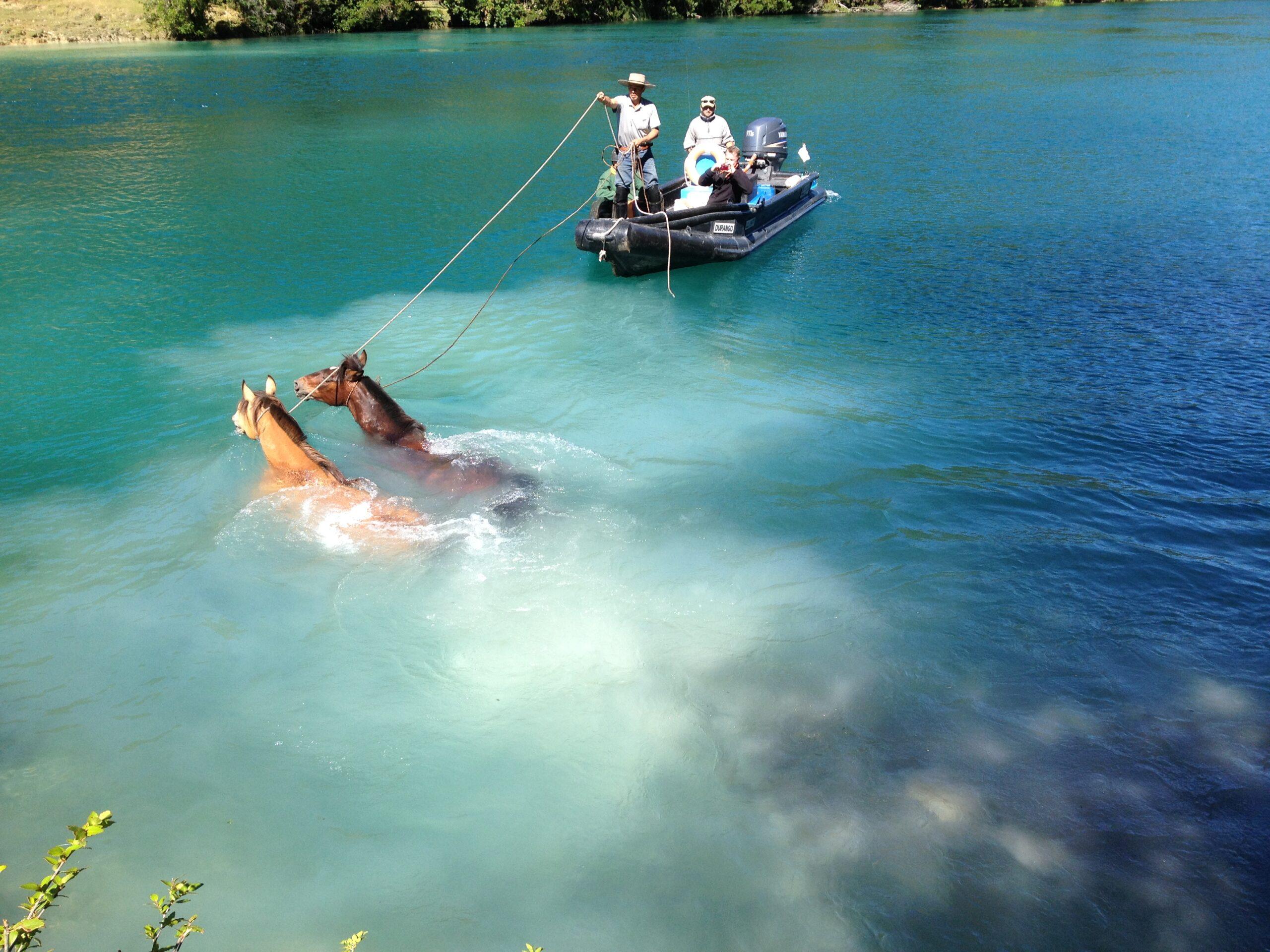 Paardrijden in Argentinië EN Chili - Vakantie te paard / Reisbureau Perlan