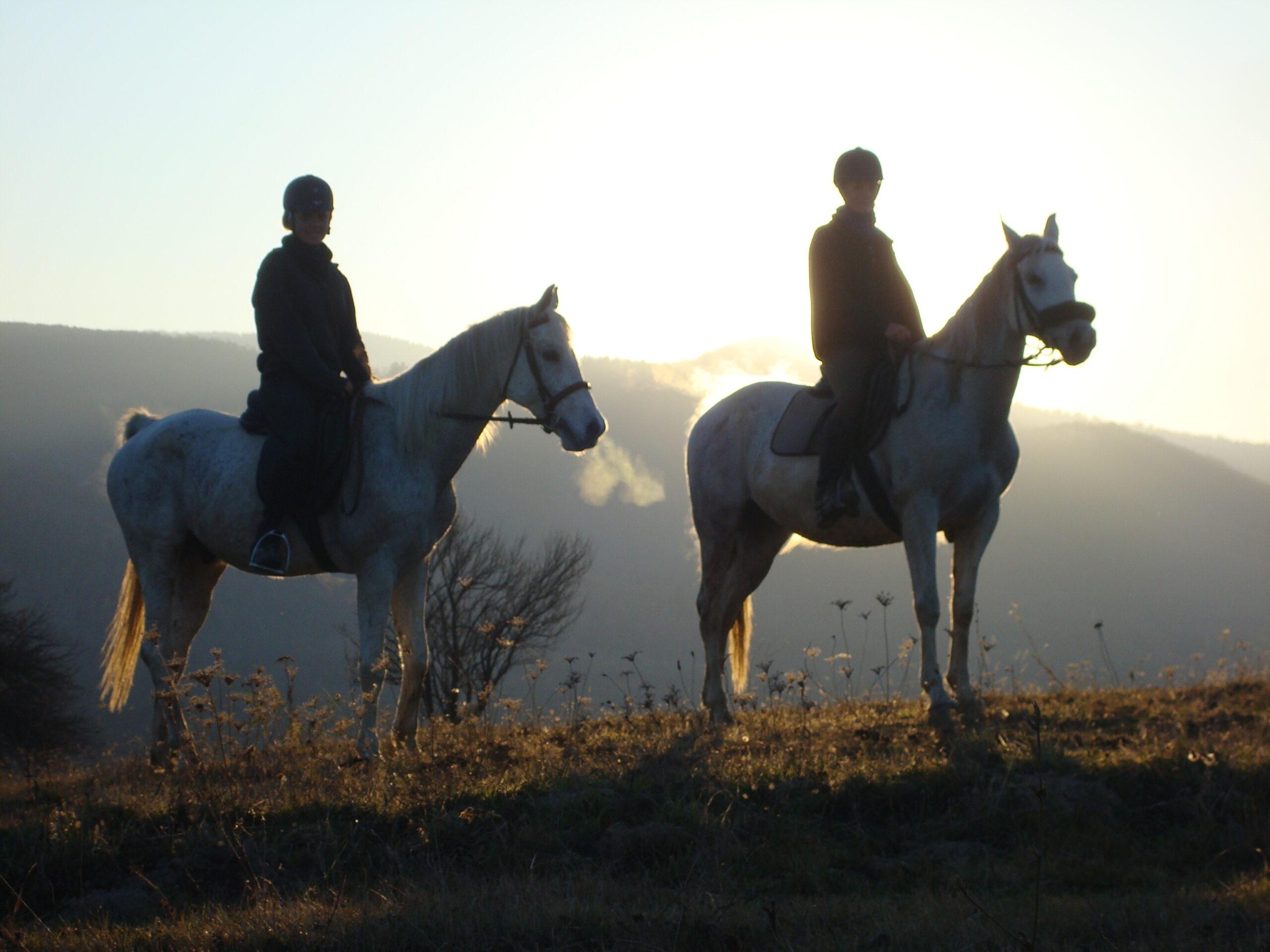 Heerlijk genieten te paard in de Karpaten / Roemenië - Vakantie te paard / Reisbureau Perlan