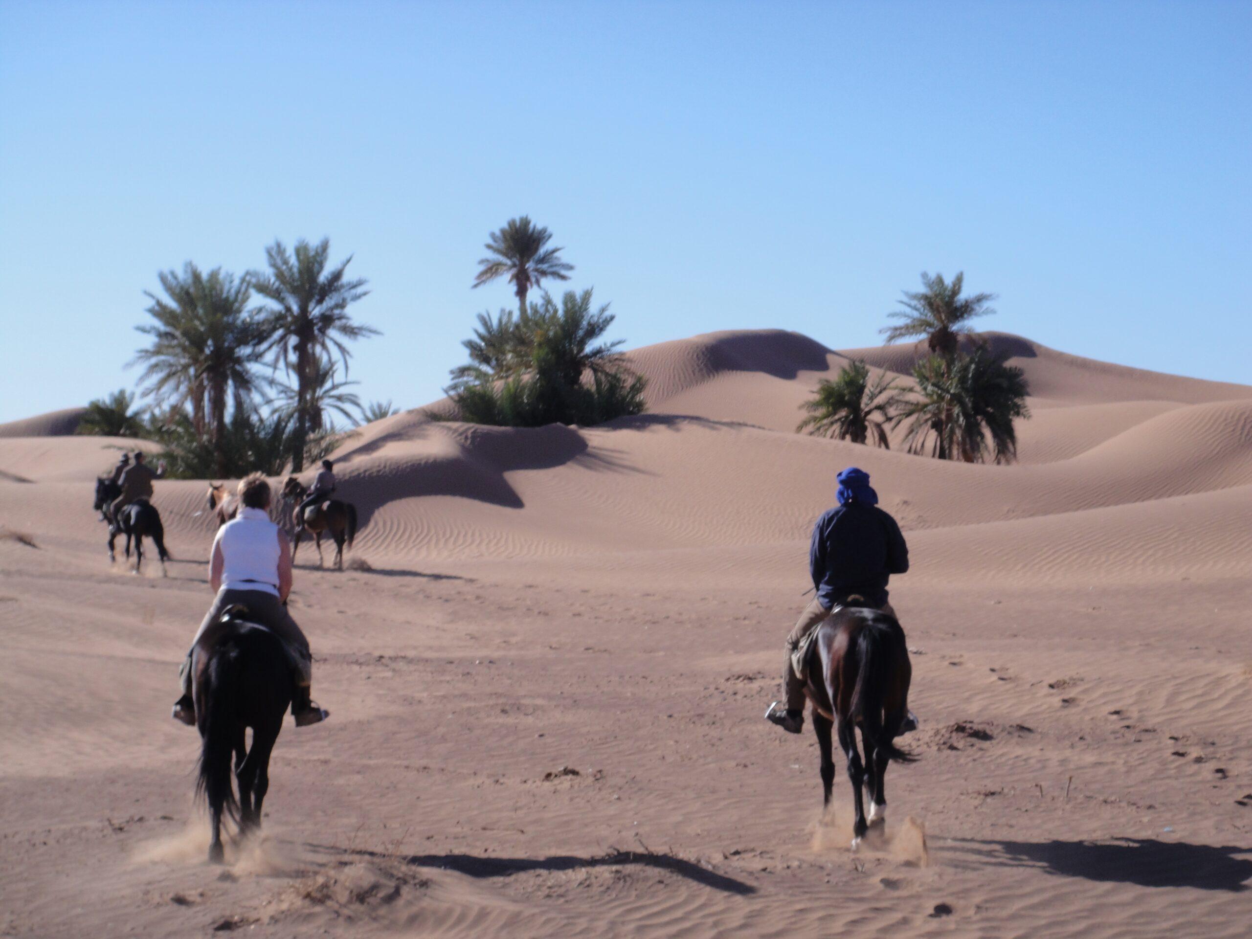 Van oase naar oase in Marokko - Vakantie te paard / Reisbureau Perlan