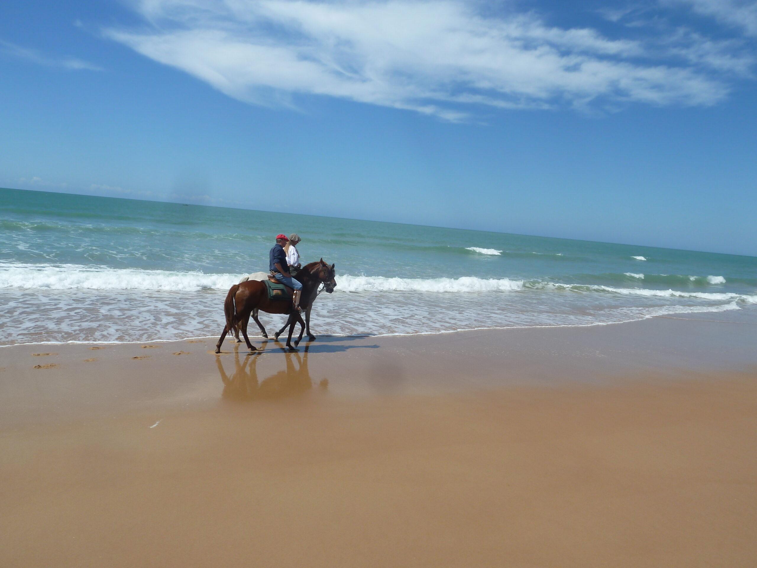 Paardrijden in Brazilië - Vakantie te paard / Reisbureau Perlan