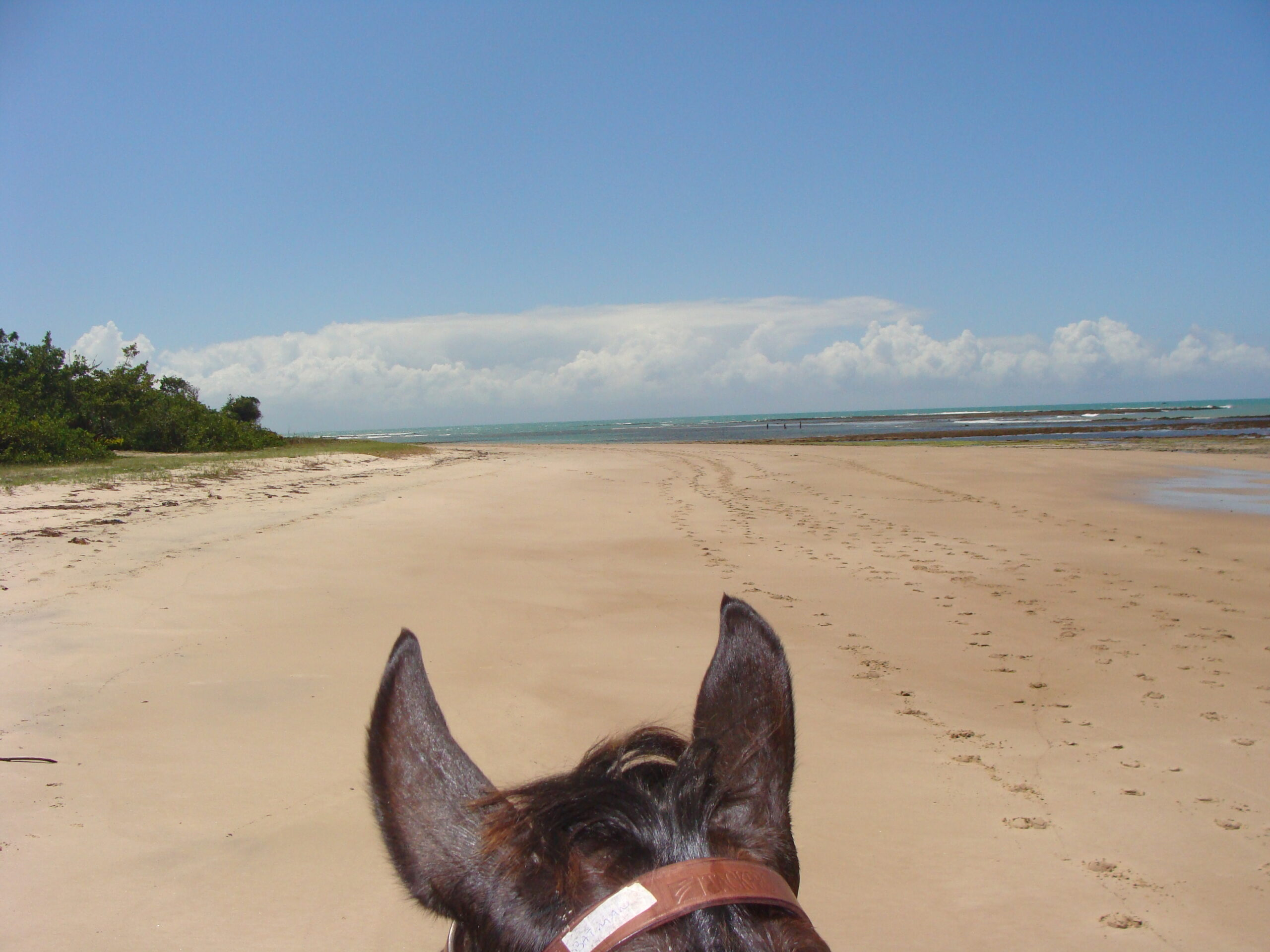 Eindeloze stranden in Brazilië - Vakantie te paard / Reisbureau Perlan