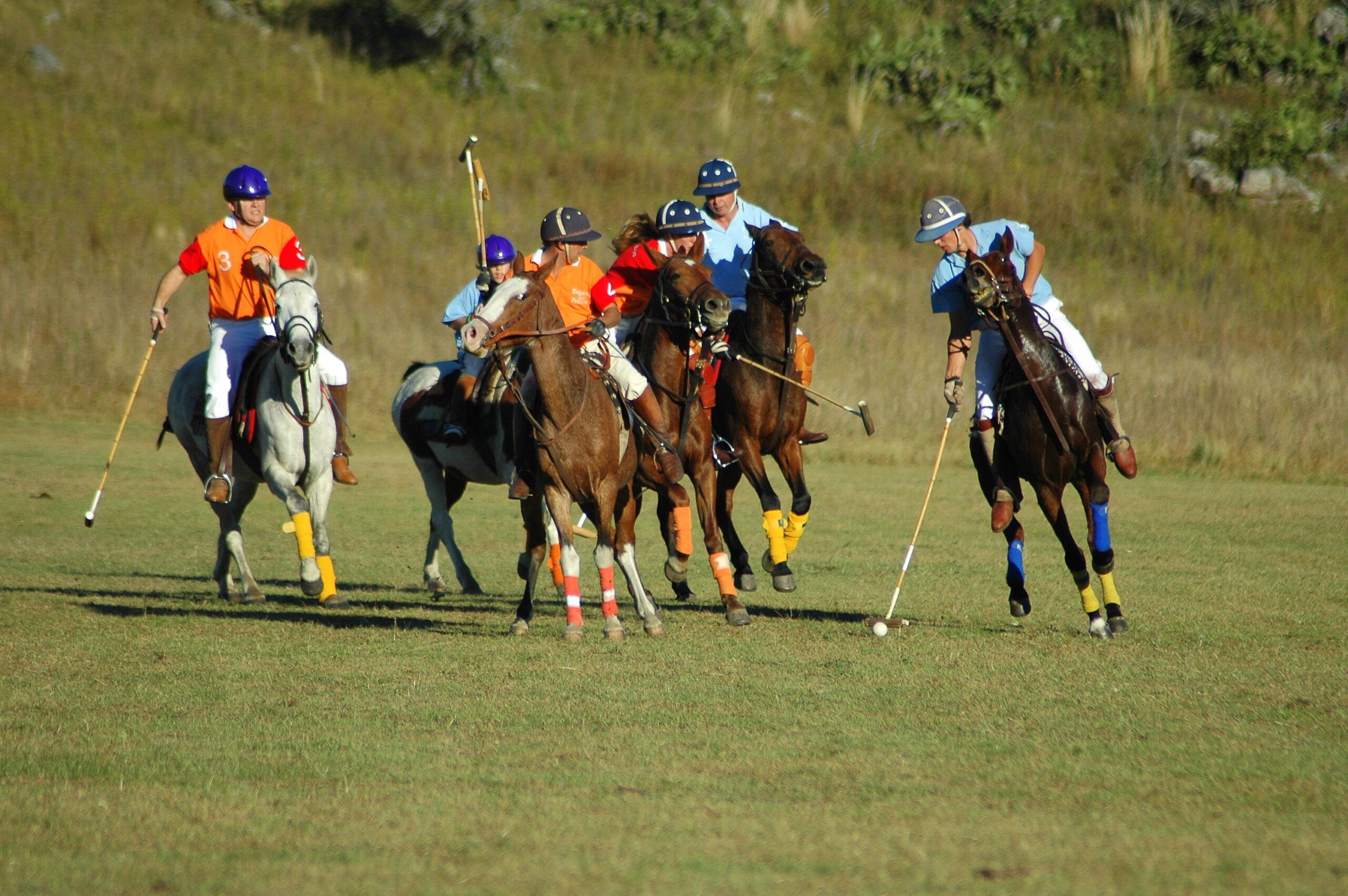 Polo spelen in Argentinië - Vakantie te paard / Reisbureau Perlan