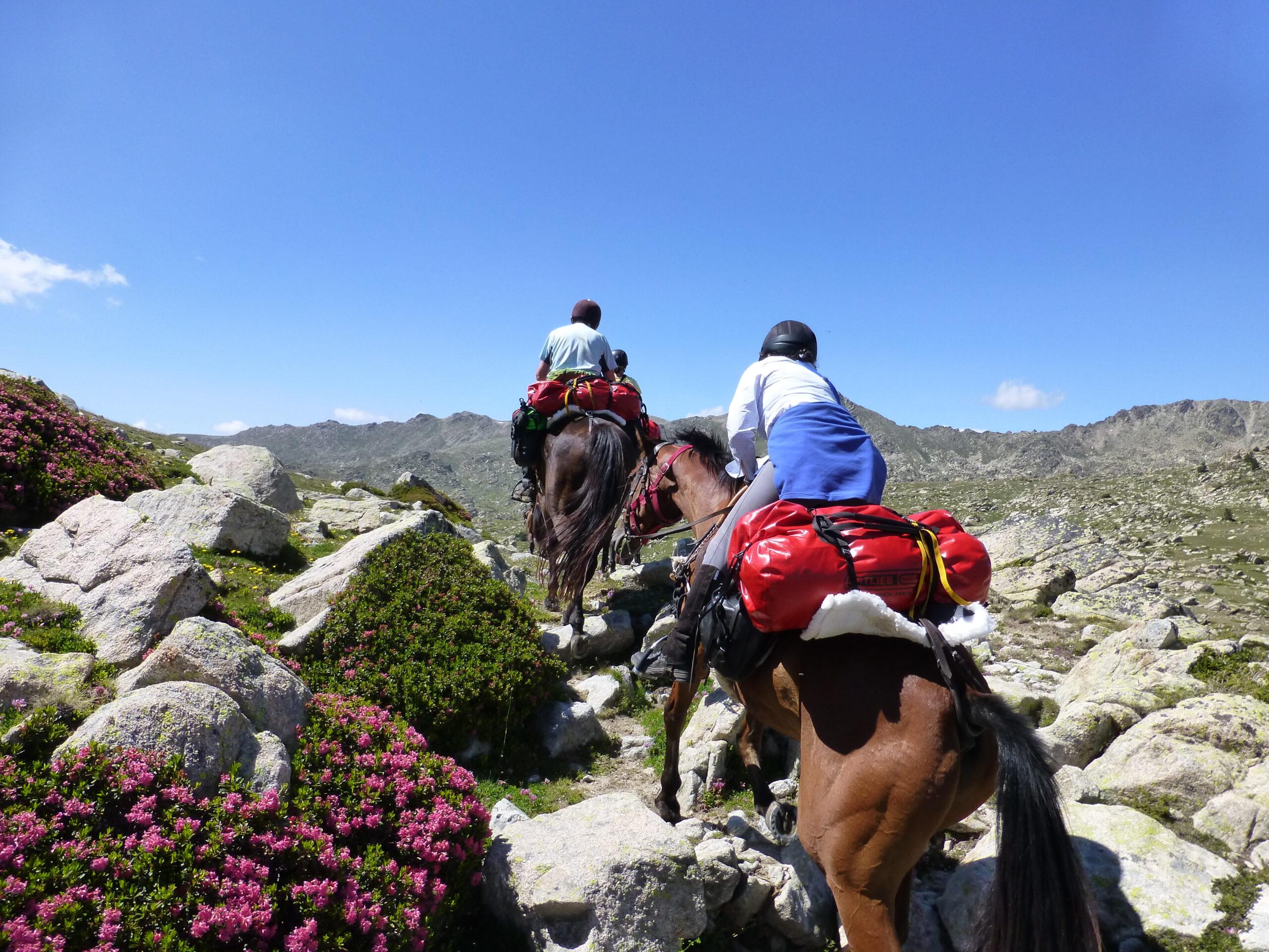 Andorra trekking te paard - Vakantie te paard / Reisbureau Perlan