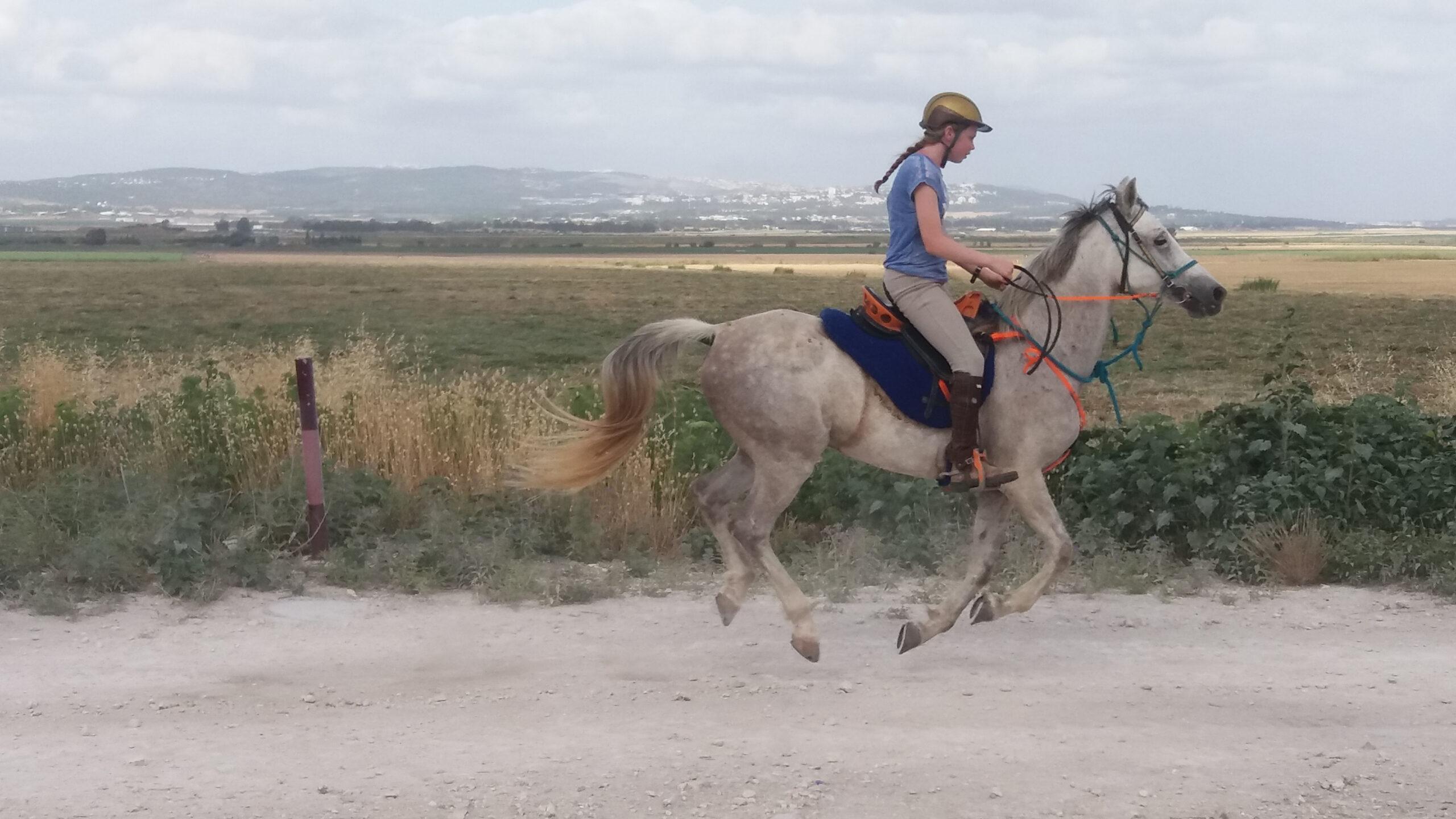 Paardrijden in Israël - Vakantie te paard / Reisbureau Perlan