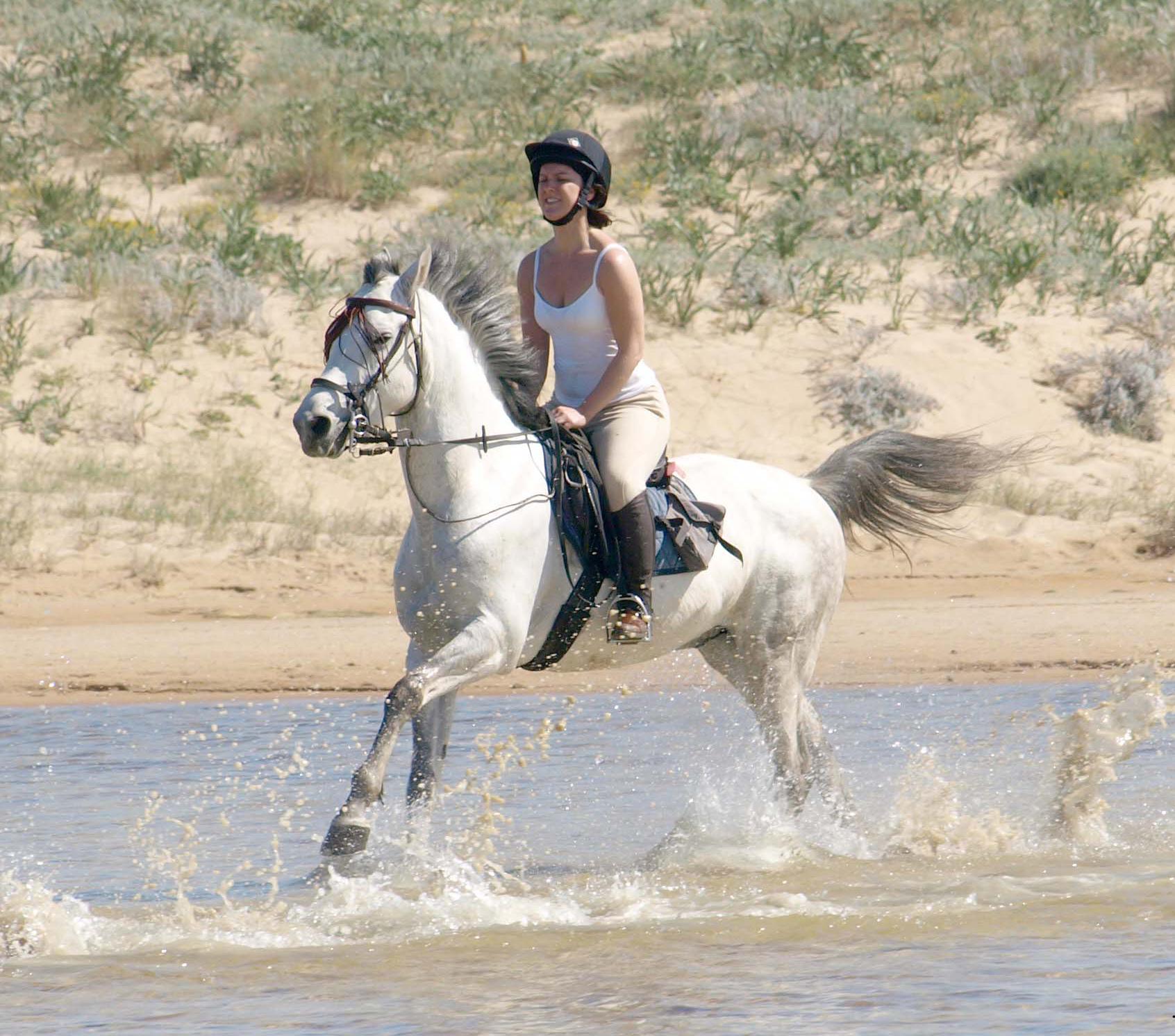 Paardrijden op het strand in Zuid Spanje - Vakantie te paard / Reisbureau Perlan