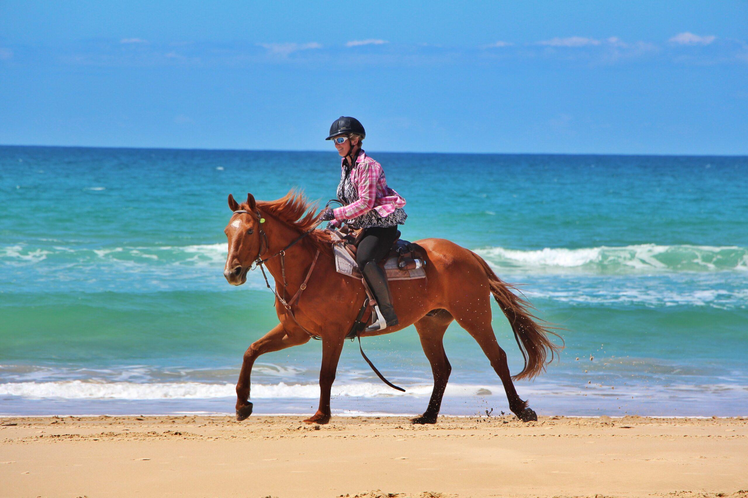 Down under te paard - Vakantie te paard / Reisbureau Perlan