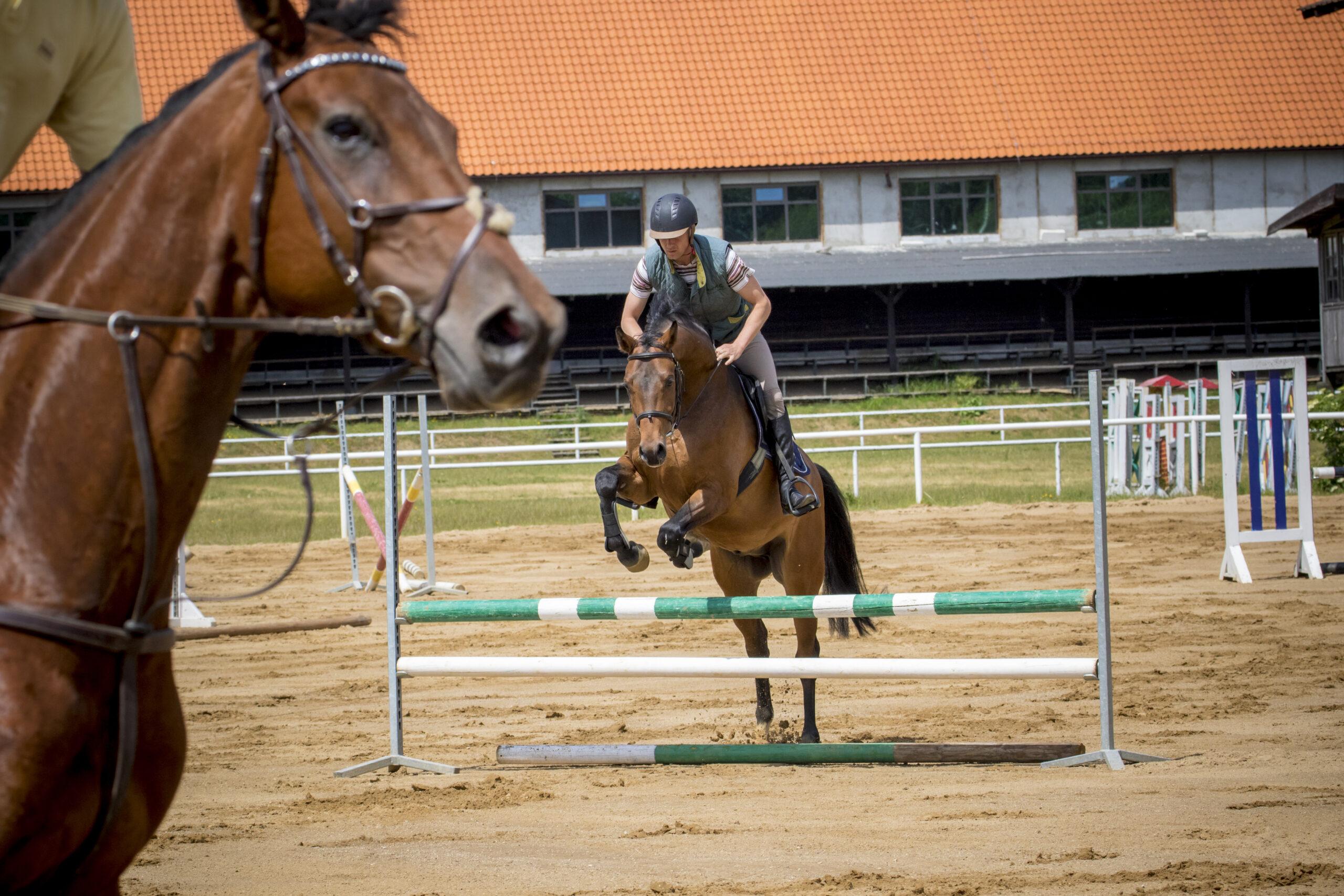 Paardrijden in Polen - Vakantie te paard / Reisbureau Perlan