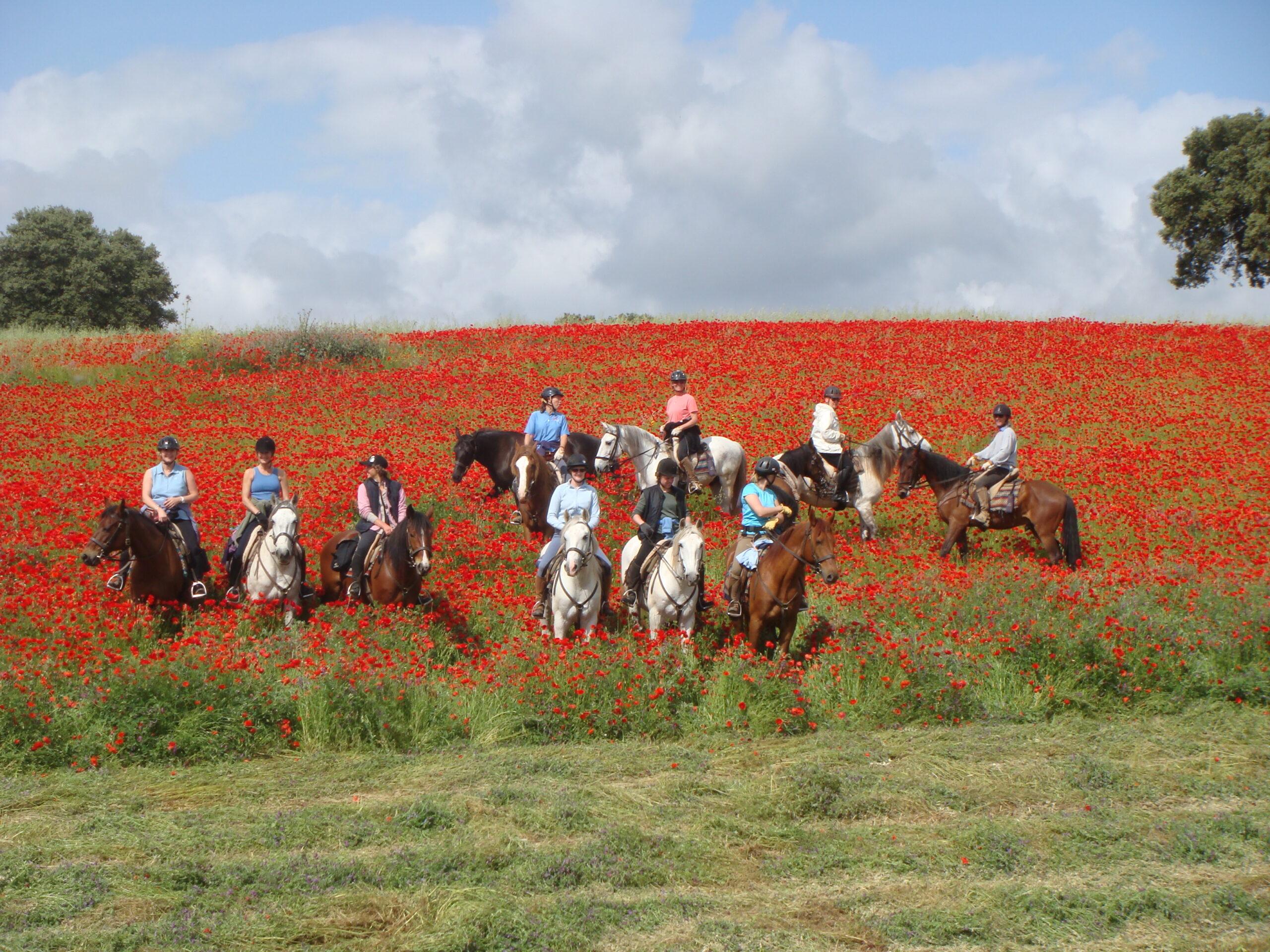 Paardrijden in Portugal - Vakantie te paard / Reisbureau Perlan