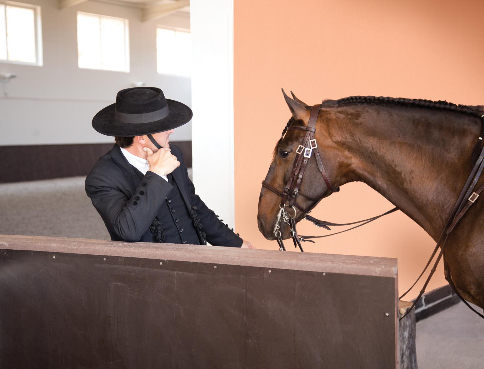 Rijden met Lusitano's in Portugal - Vakantie te paard / Reisbureau Perlan