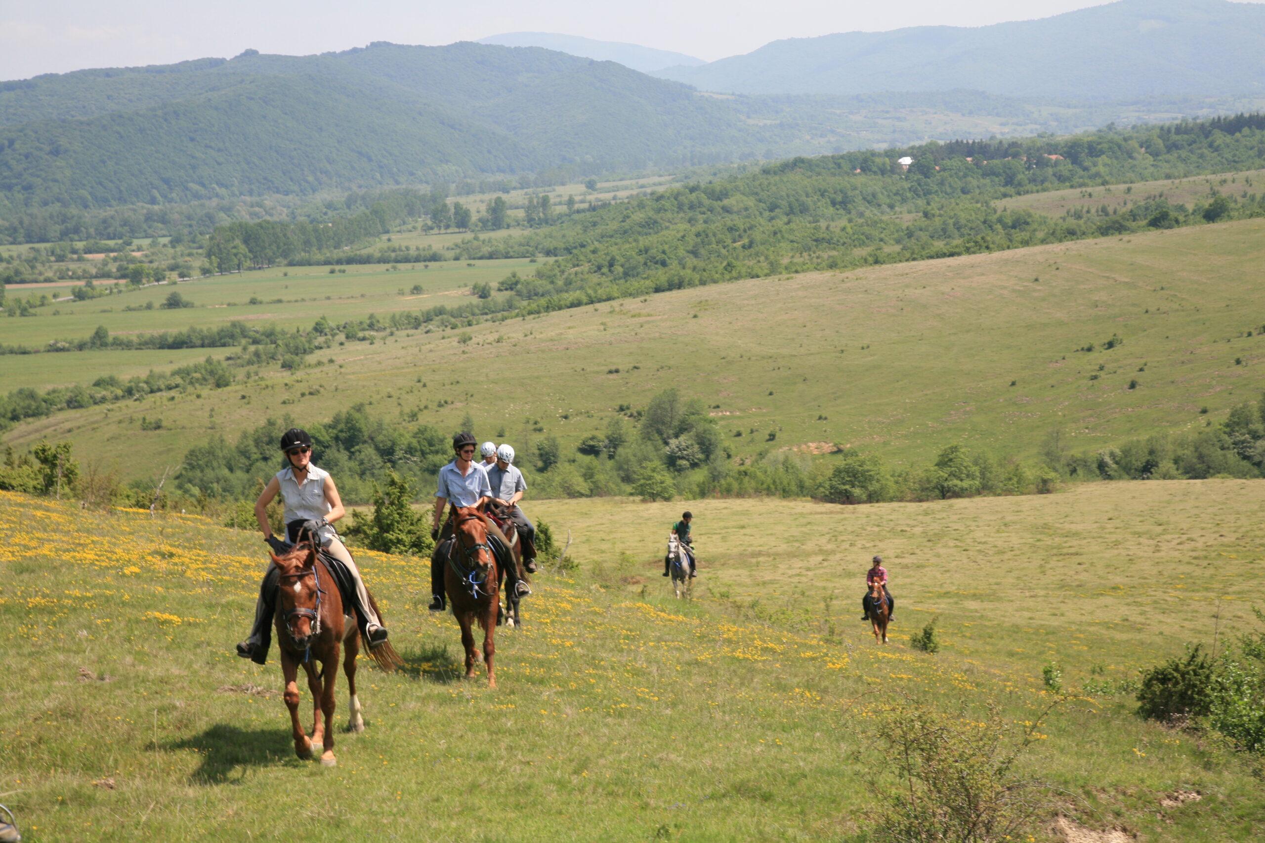 Paardrijden in en rond de Karpaten (Roemenië) - Vakantie te paard / Reisbureau Perla
