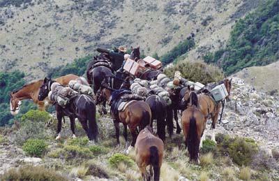 Expeditie te paard in Nieuw Zeeland