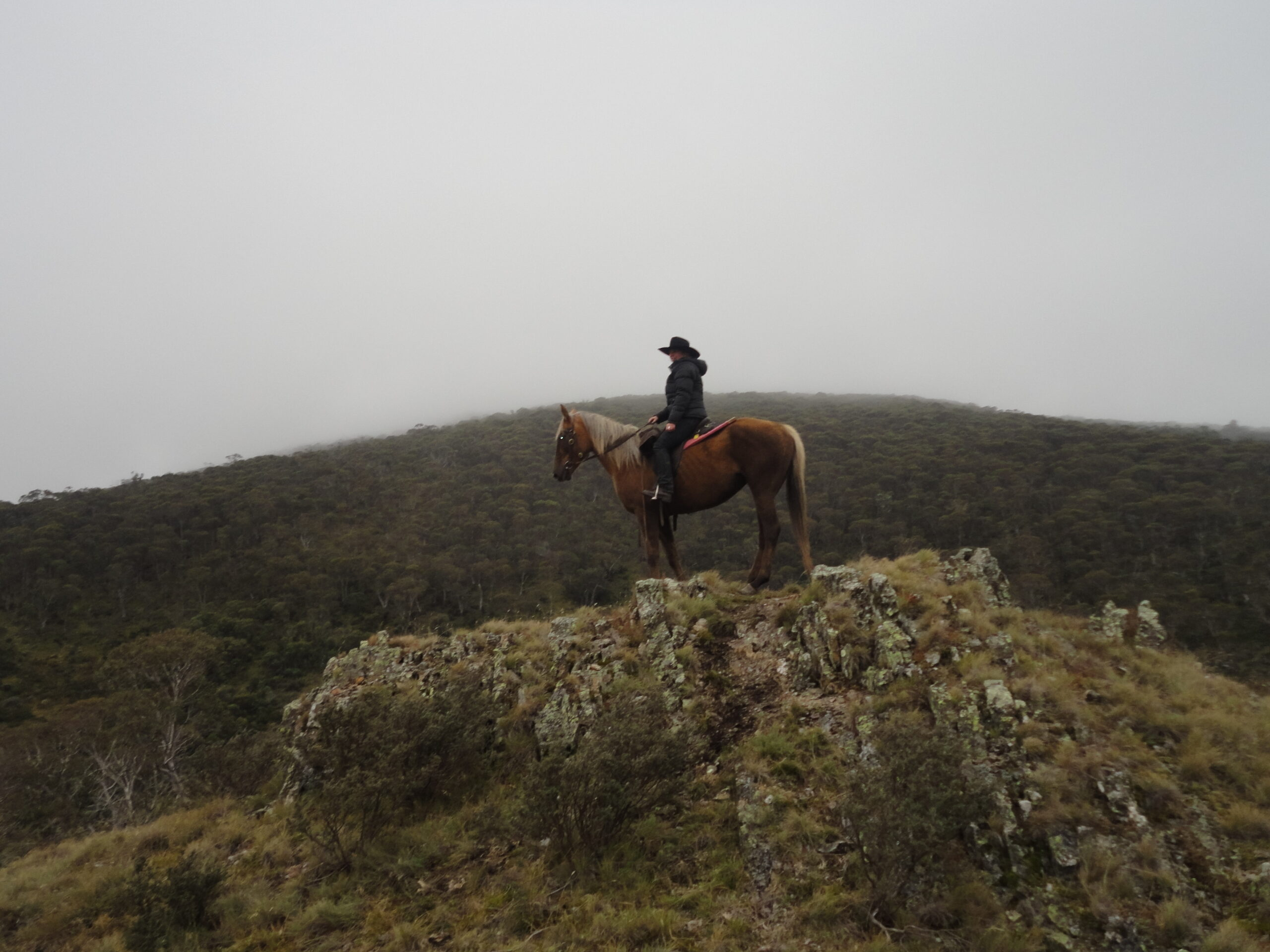 Paardrijden in Nieuw-Zeeland - Vakantie te paard / Reisbureau Perlan