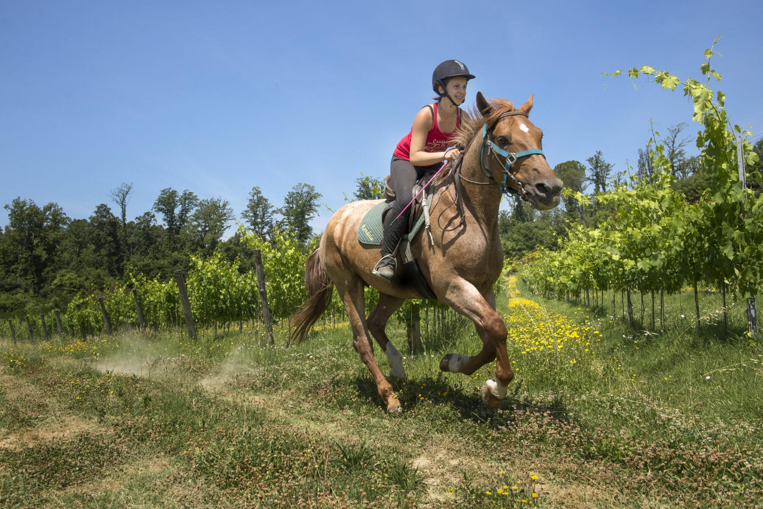 In galop over Italiaanse grond - Vakantie te paard / Reisbureau Perlan