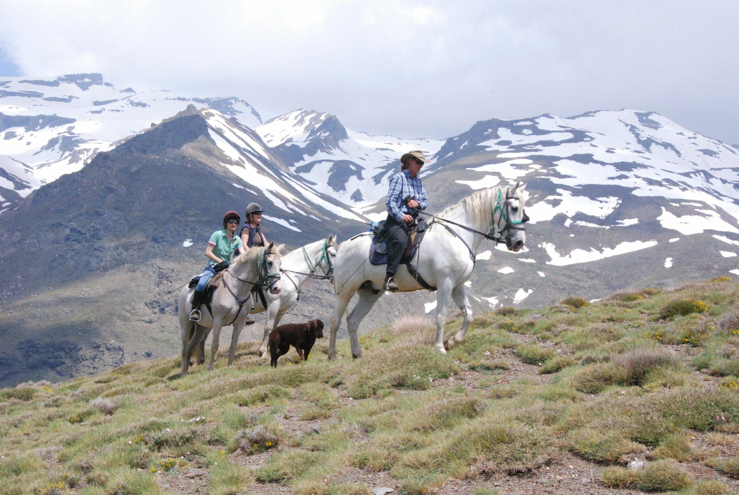Paardrijden in de Sierra Nevada - Vakantie te paard / Reisbureau Perlan