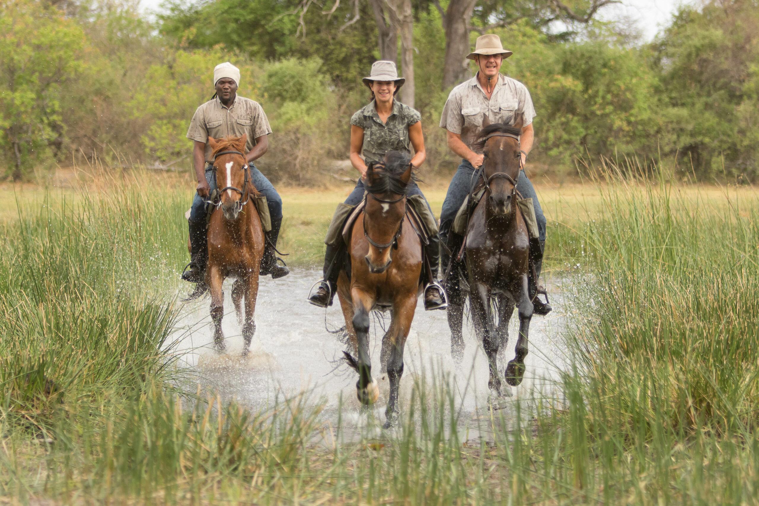 Safari te paard in de Okavango Delta / Botswana - Vakantie te paard / Reisbureau Perlan