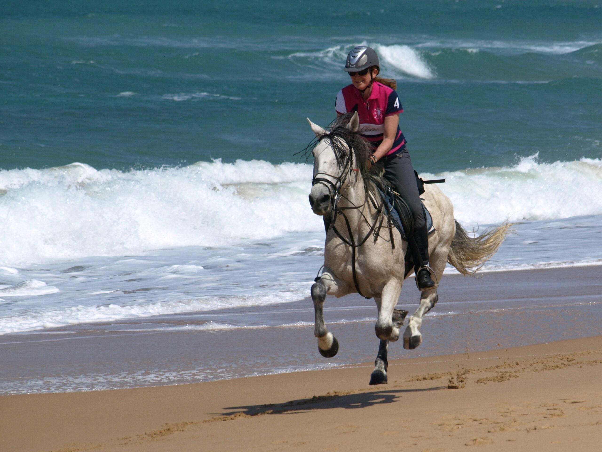 In volle galop op het strand in Zuid Spanje - Vakantie te paard / Reisbureau Perlan
