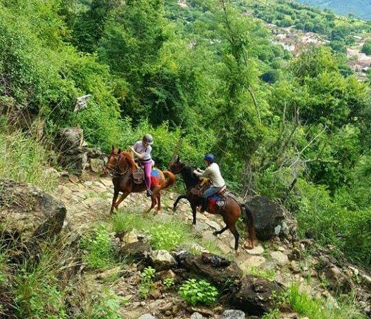 Paardrijden in Colombia - Vakantie te paard / Reisbureau Perlan