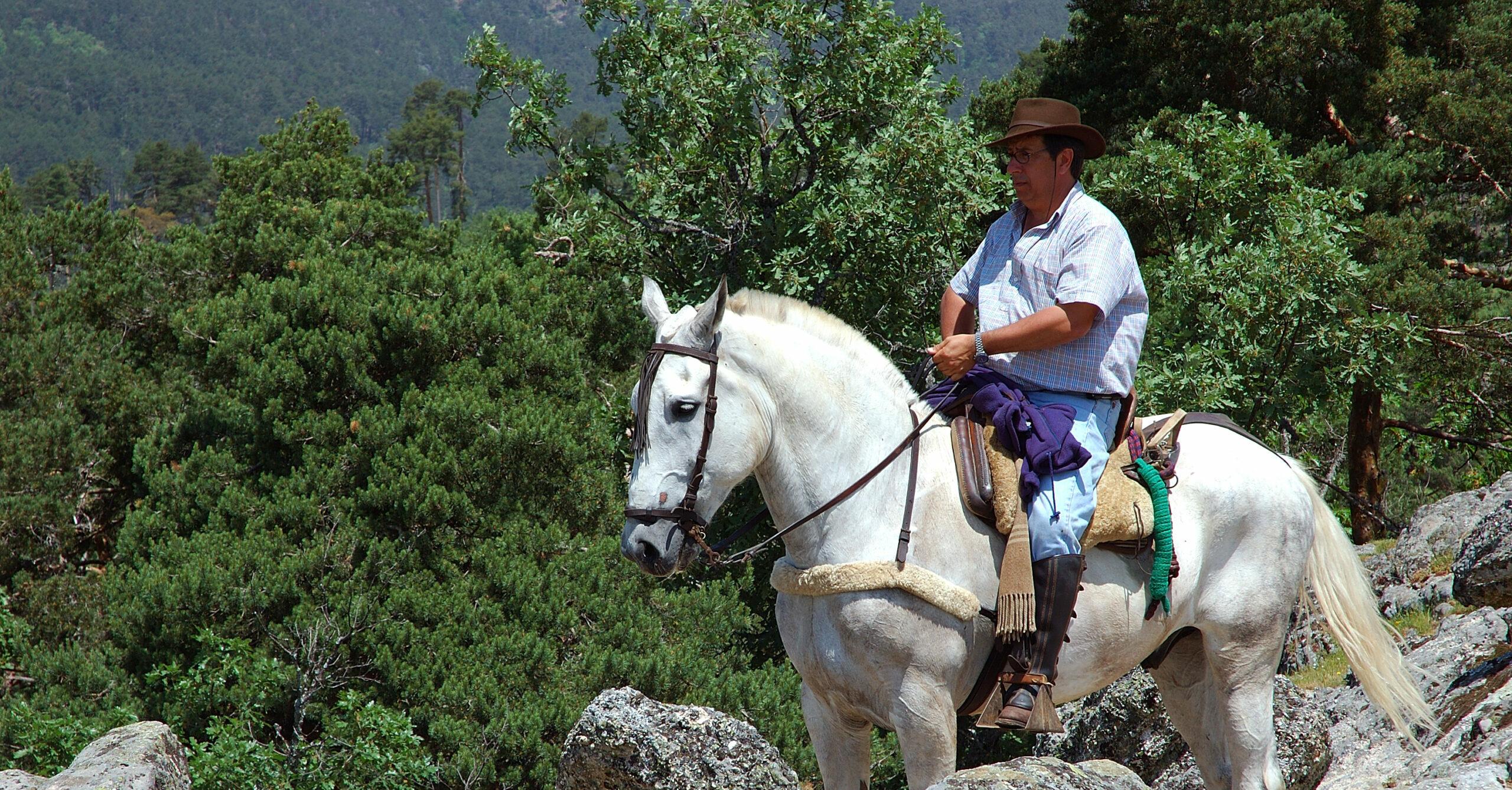 Transhumance te paard - Vakantie te paard / Reisbureau Perlan