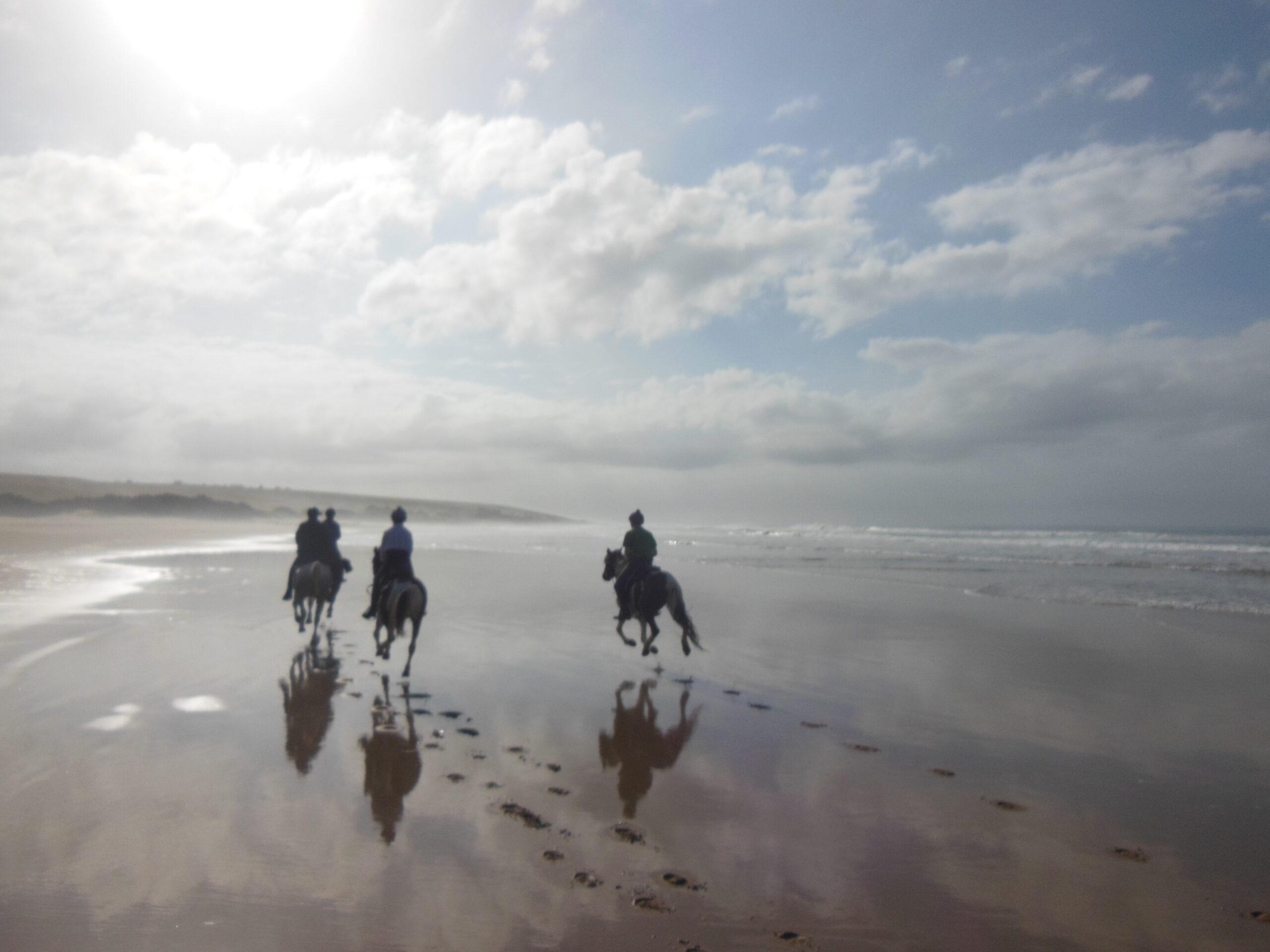 Paardrijden aan de Wild Coast in Zuid Afrika - Vakantie te paard / Reisbureau Perlan