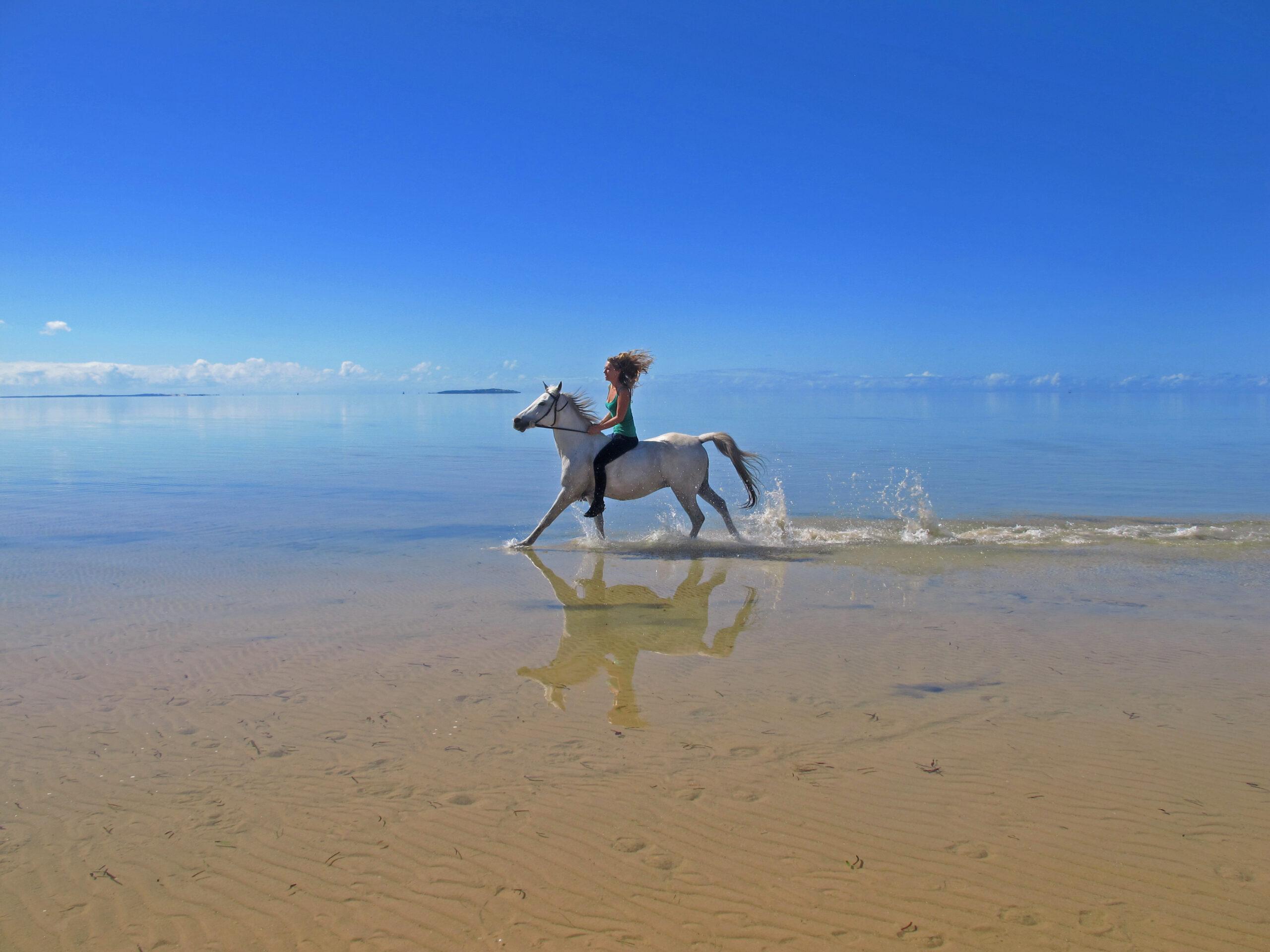 Paardrijden in Mozambique - Vakantie te paard / Reisbureau Perlan