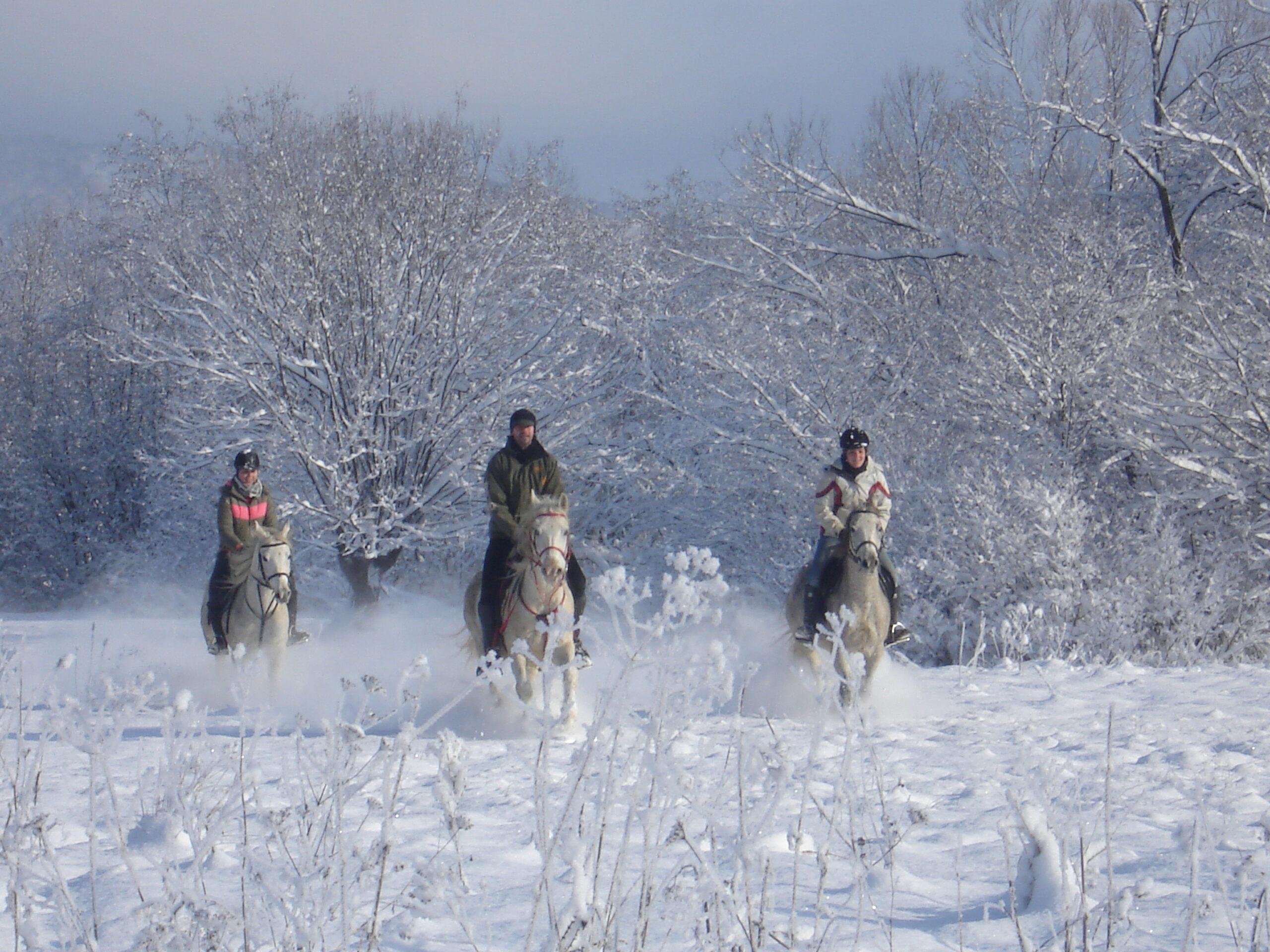 Winterrit in Roemenië - Vakantie te paard / Reisbureau Perlan