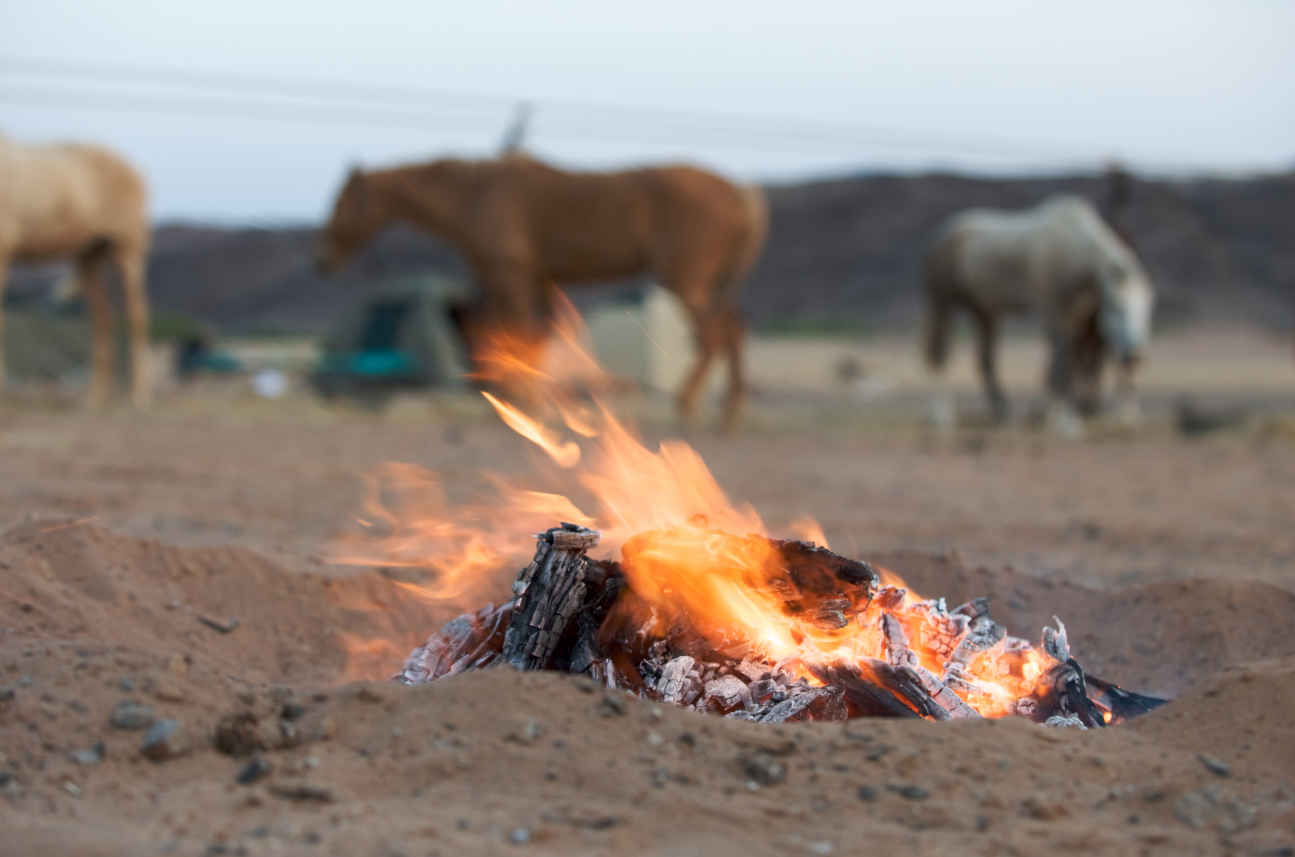 Paardrijden in Namibië - Vakantie te paard / Reisbureau Perlan