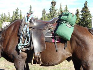 Te paard door de wildernis in Canada - Vakantie te paard / Reisbureau Perlan