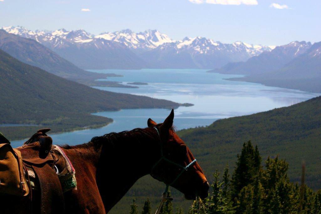Paardrijden in Canada - Vakantie te paard / Reisbureau Perlan